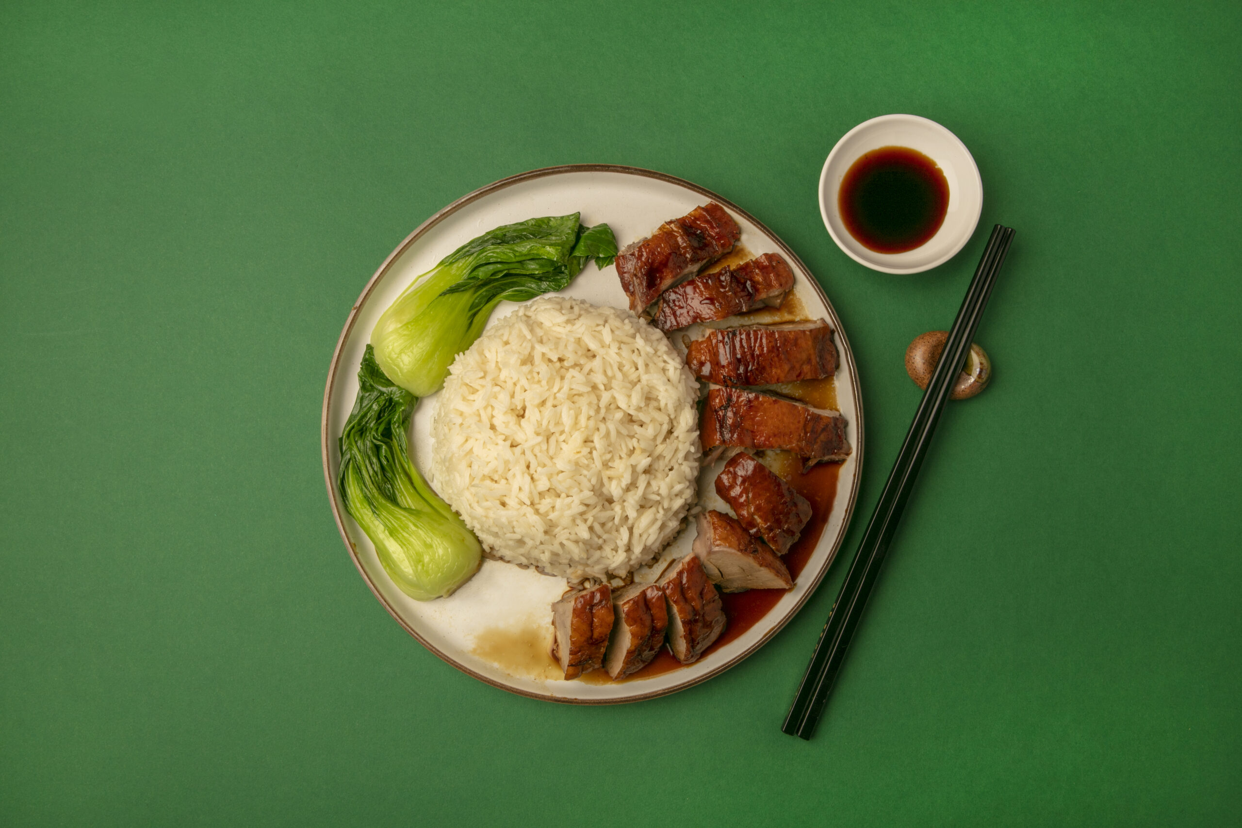 Roast Duck with rice